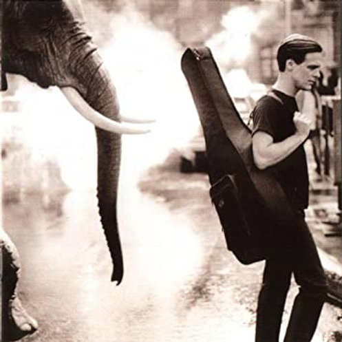 BRYAN ADAMS - ON A DAY LIKE TODAY CD