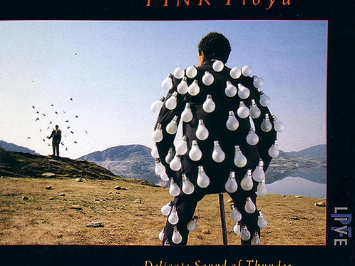 PINK FLOYD - DELICATE SOUND OF THUNDER DUPLO CD BOX ACRÍLICO