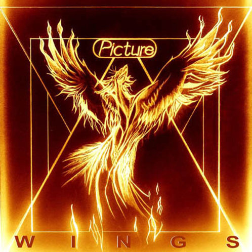 PICTURE - WINGS CD