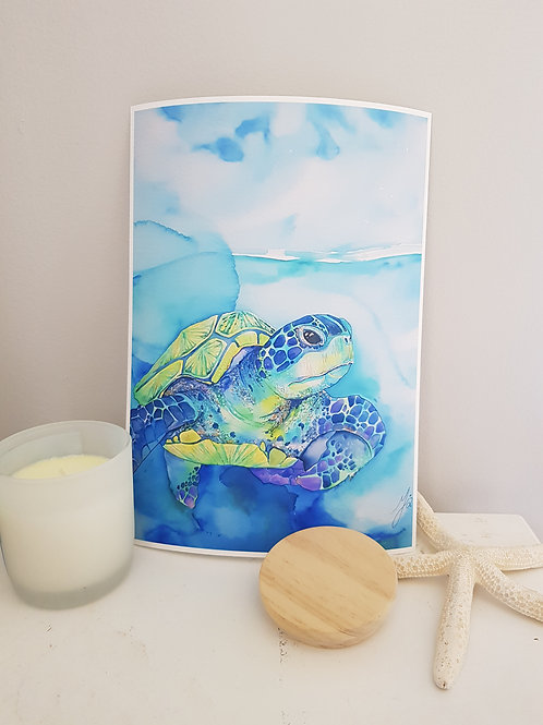 Turquoise Turtle Art Print