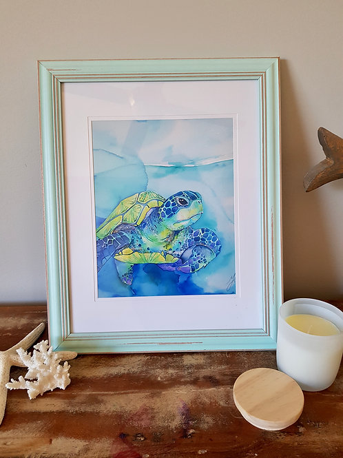 Turquoise Turtle Framed Print