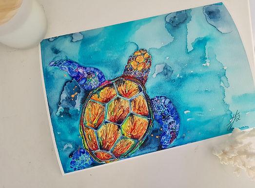 Watercolour Art Prints