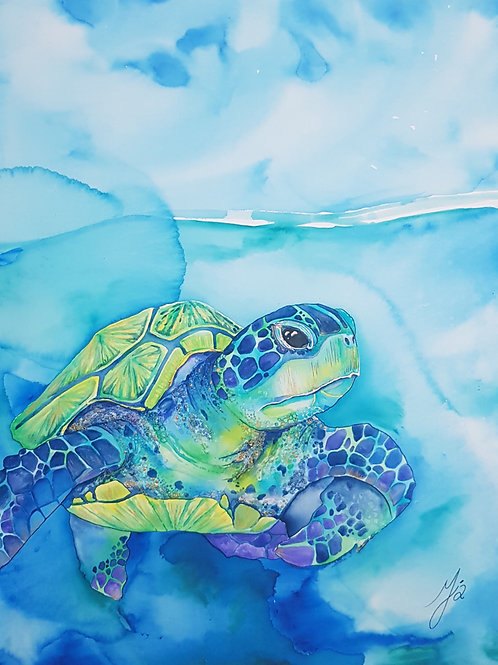 Turquoise Turtle