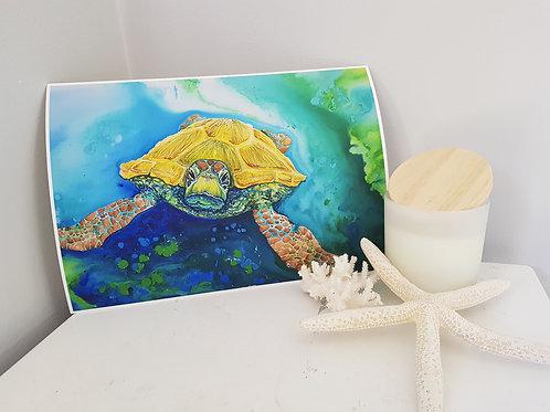 Emerald Beach Art Print