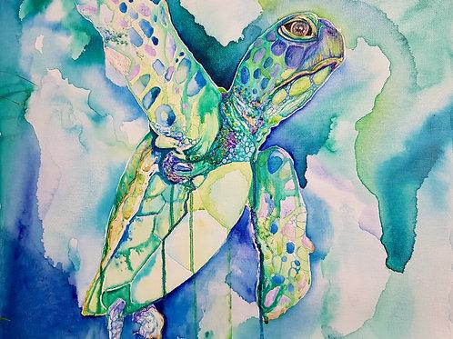 Bottle Green Turtle