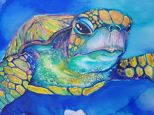 Iridescent Turtle