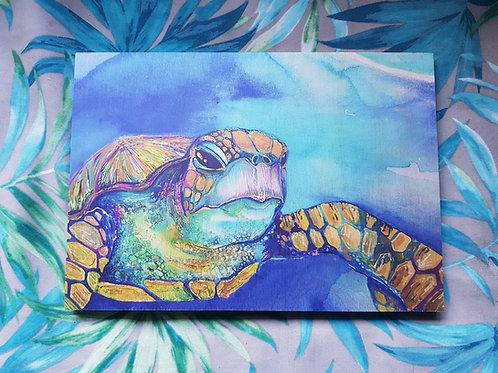 Wooden Art Print - Iridescent Turtle