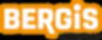 BERGIS_Logo_NEU_2019.png