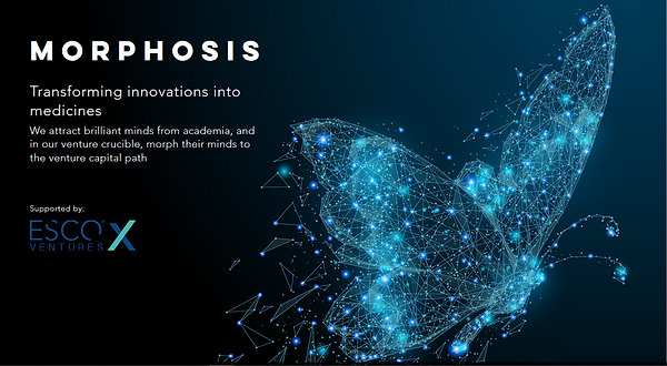 morphosis-transforming-innovations-into-