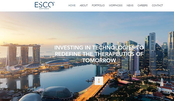 esco-ventures-website.jpg