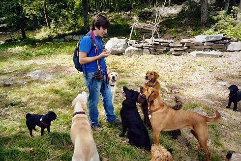 Ryan Hall dog hike