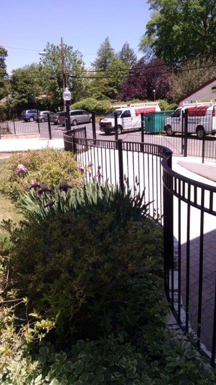 Decorative curved rail