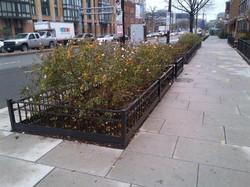 Grid style tree fence