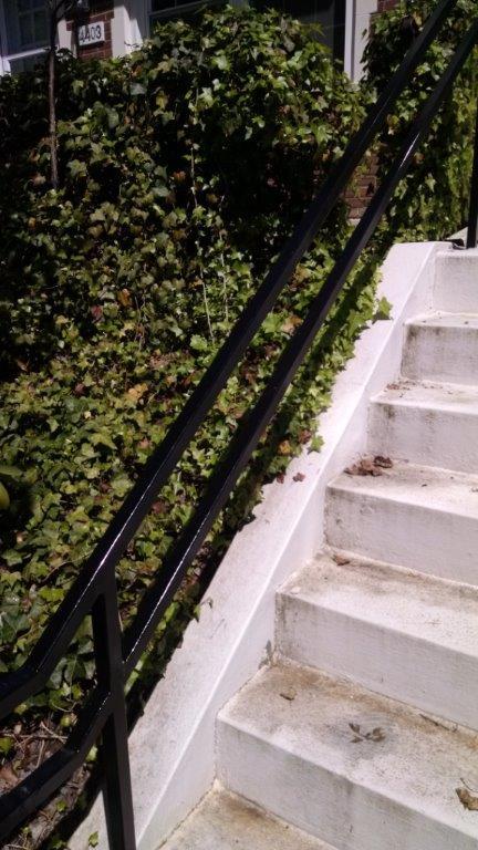 Specialty stair rail