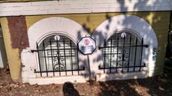 Window guard with decorative panel