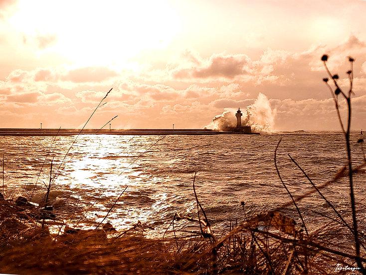 Nr.252 Morgenstimmung im Hafen von Sassnitz bei stürmischer See