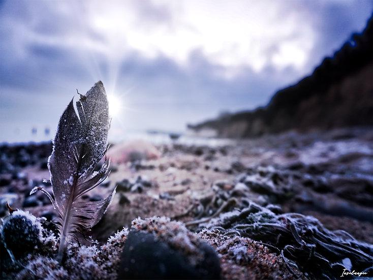 Nr.270  Wintermorgen am Strand von Glowe