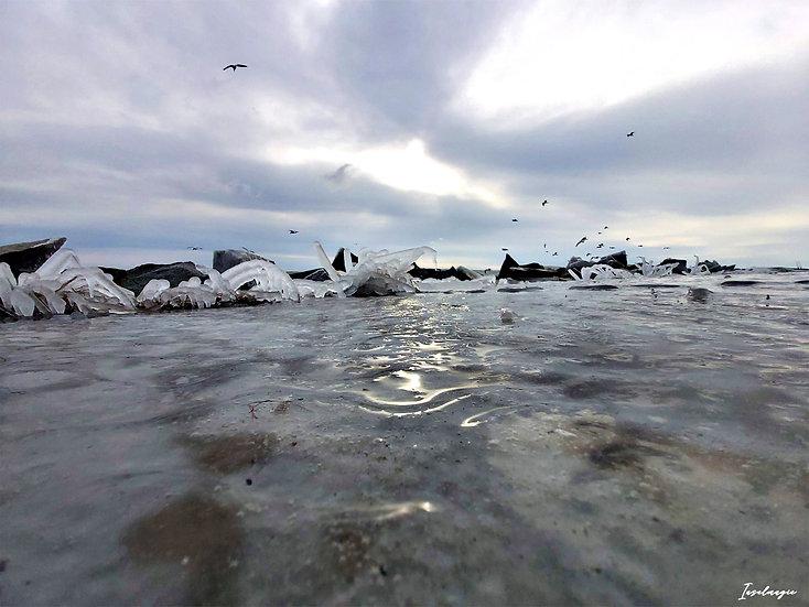 Nr.236 die gefrorene Steinpackung vor dem Fischwerk im Sassnitzer Hafen