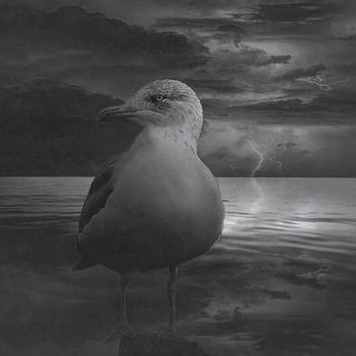 Eine laue Sommernacht. Die Sonne ist bereits untergegangen, der Strand menschenleer, nur die Geräusche der Ostsee unterbrechen noch die friedliche Stille. In der Ferne zieht ein Gewitter vorbei und erhellt die dunkle Nacht   - DIN A3   - aufwändige Collage aus      digitaler Zeichnung   Radierung und   Zeichnung mit Bleistift ,    Graphite und Uniball auf     Zeichenkarton (190g/m²)