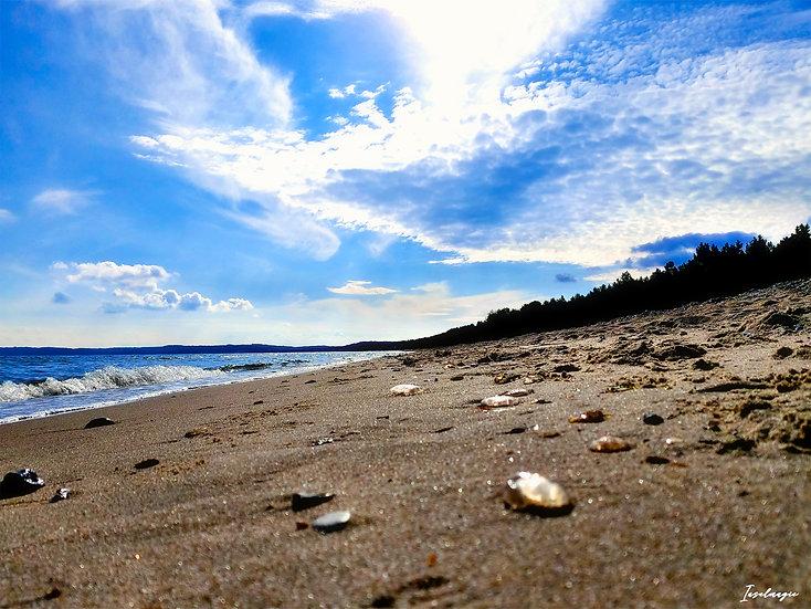 Nr.123 am Strand von Prora