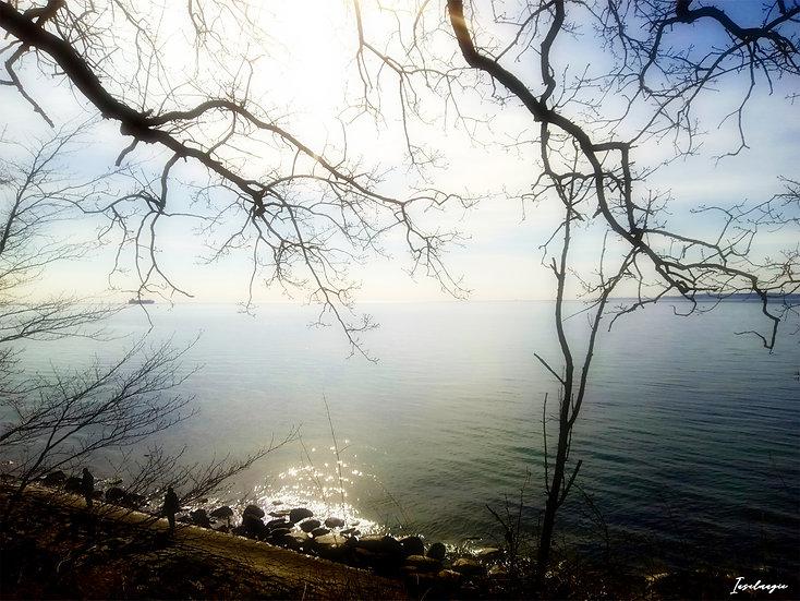 Nr.57 Blick auf Reste der Hafenmauer am alten Strand Sassnitz bei ruhiger See
