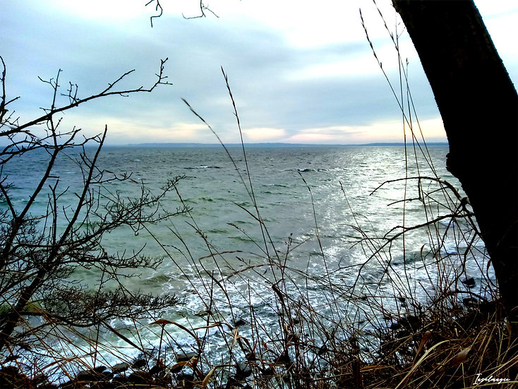 Nr.19 Morgenstimmung mit Blick von Dwasieden auf die stürmische Ostsee