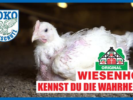 Tierquälerei für Wiesenhof