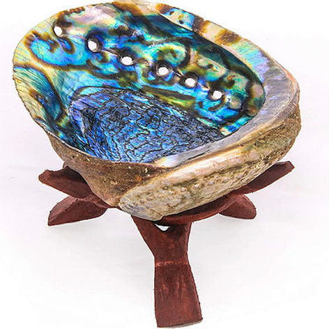 Abalone Shell with Stand