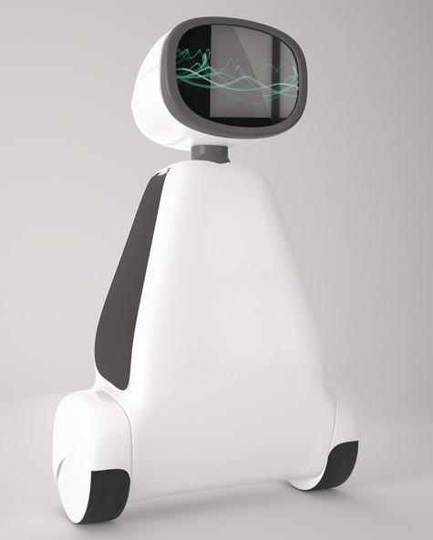 Autonomo | Studio Alisa Sheinson