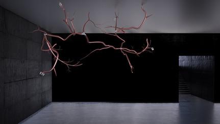 Tree Light   Studio Alisa Sheinson