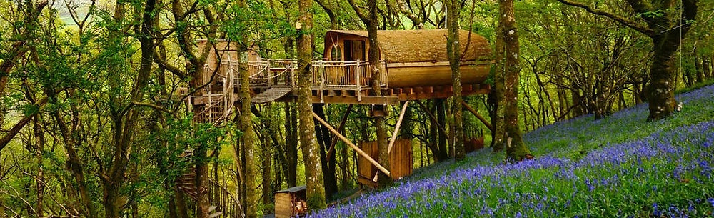 canopy and stars luxury treehouse in rural england