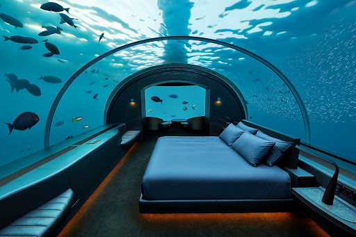 Hotel bedroom under the ocean in the maldives with a glass ceiling and fish swimming all around.