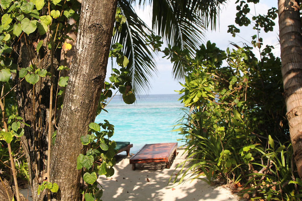 Sun lounger in the Maldives visible through trees