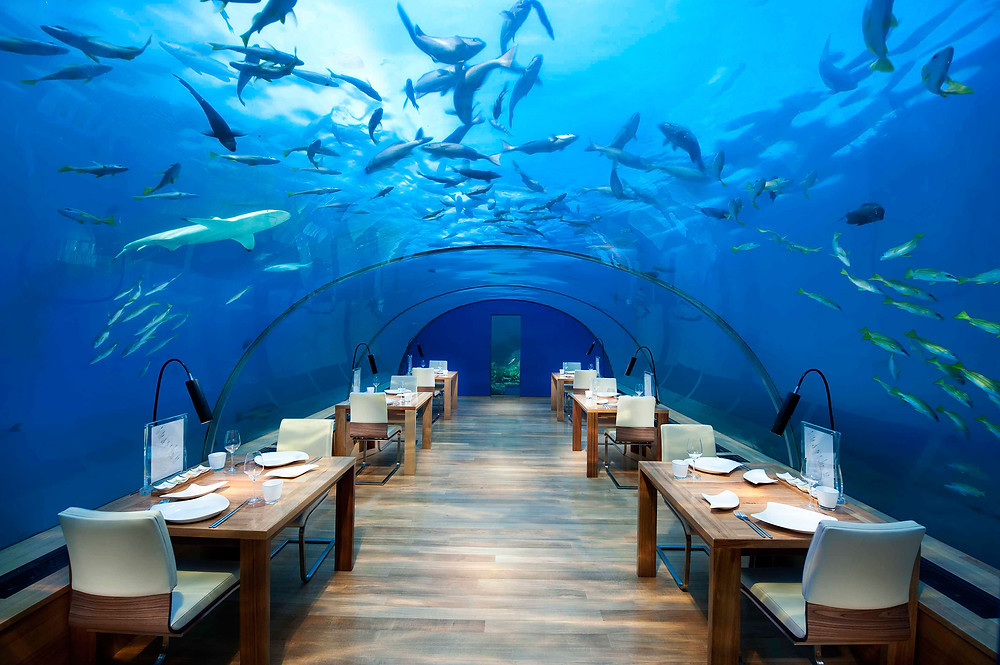 A restaurant that is underwater, looking a bit like an aquarium with tables