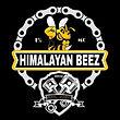 Himalayan Beez.jpg