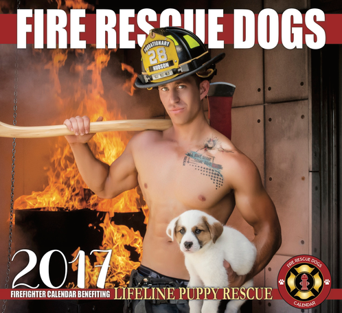 Image result for lifeline puppy rescue calendar 2017