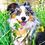 Thumbnail: Flower Bouquet - Bandana