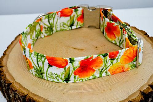 California Poppies - Dog Collar
