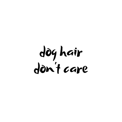 Dog Hair Don't Care Add-On