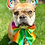 Thumbnail: Pride - Bow