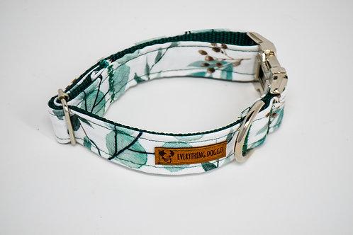 Eucalyptus - Dog Collar