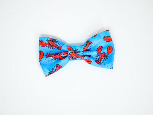 Lobster - Bow