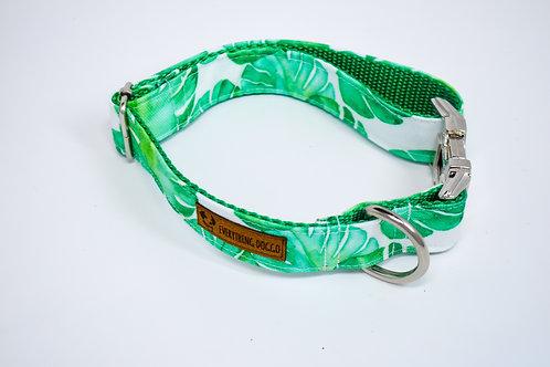 Monstera - Dog Collar