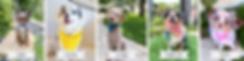 Screen Shot 2020-06-24 at 8.00.04 PM.png