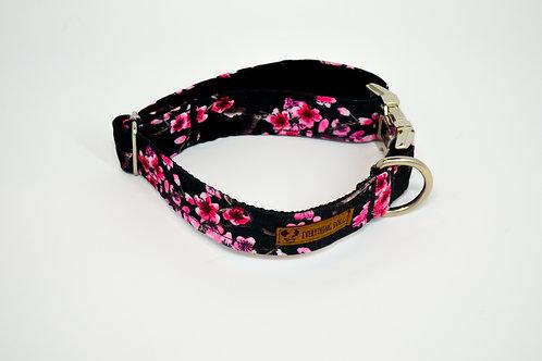 Sakura - Dog Collar