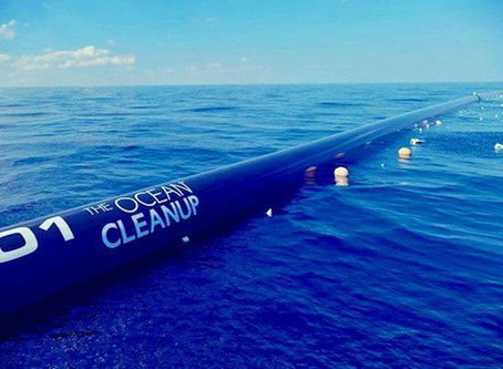 THE PROJECT TO CLEAN UP OUR OCEANS HAS BEGUN!