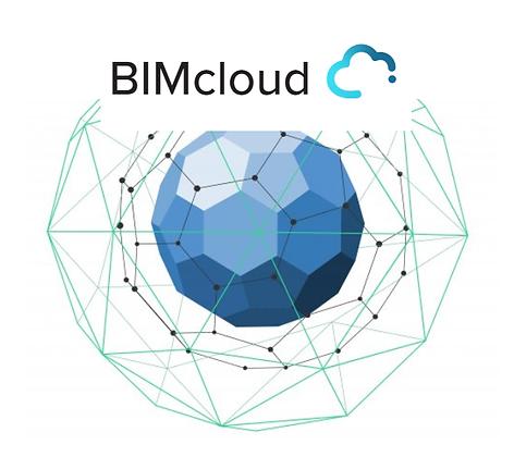 מנוי שנתי לעבודת צוות ואחסון בענן  BIMcloud VS3