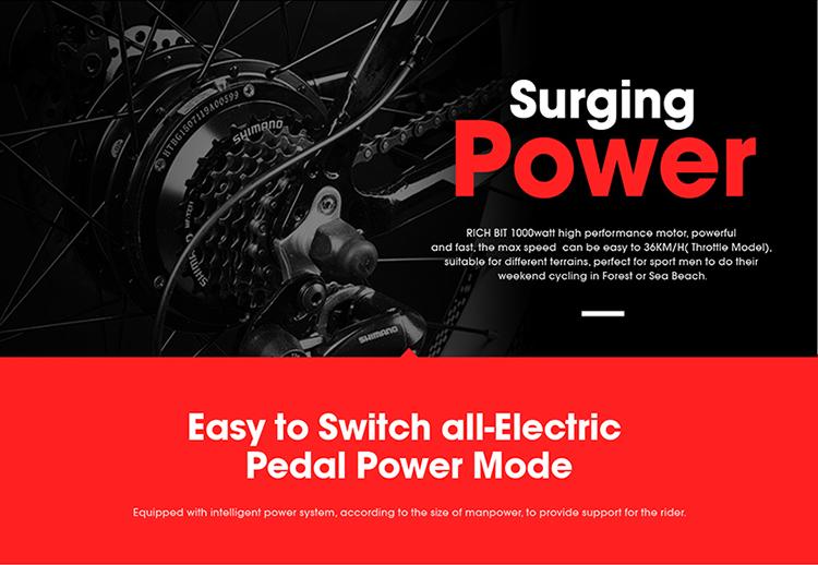 electric fat bike power