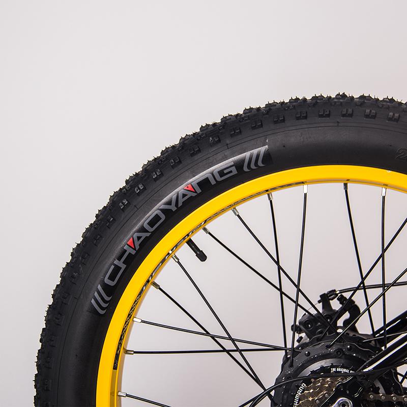 eMTB fat tire