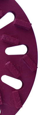 STRIPPER grinding disc segment